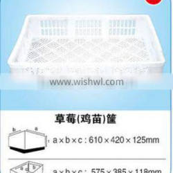 Hot sale HDPE plastic basket for strawberry