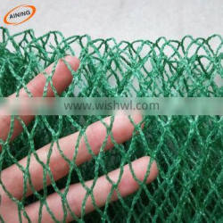 Green anti mole netting protect the grapes from birds