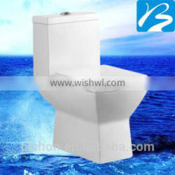One Piece Toilet 100 Or 200mm Wasndown