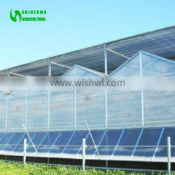 Sell Used Polycarbonate Greenhouse for Agriculture
