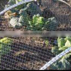 agricultural insect netting ,anti insect net