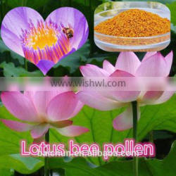 Crushing Lotus Bee Pollen for lossing weight women who is Designed