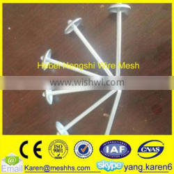 iron umbrella head roofing nails