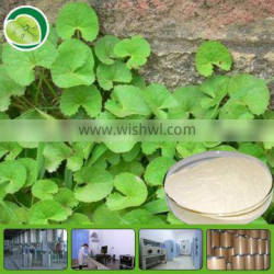 top quality free sample low price centella asiatica extract asiaticosides