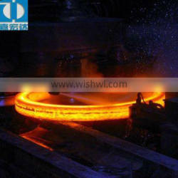 ANSI hot rolling flang (seamless ring rolled flange)