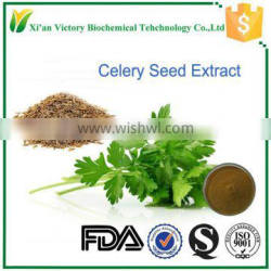 hypotensive health food celery seed extract