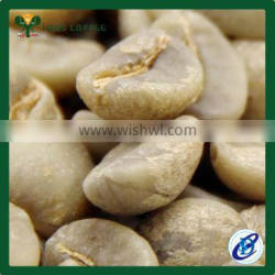 Green Coffee Beans for wholesale