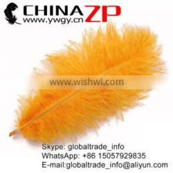 CHINAZP No.1 Supplier in China Factory Exporting Wholesale from 8inch to 10inch Dyed Orange Ostrich Feathers
