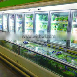 supermarket combi-freezer for frozen food