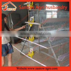 Chicken Use broiler breeder cage / automatic poultry battery cages