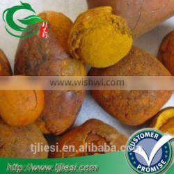 supply 2016 cattle ox cow gallstones bezoar with low price