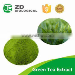 Green tea extract powder10%~99% l theanine