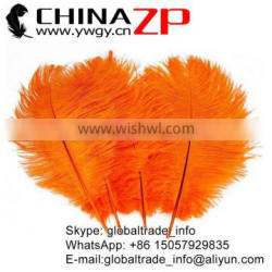 CHINAZP No.1 Supplier in China Factory Exporting Wholesale from 10inch to 12inch Orange Ostrich Feathers for Sale