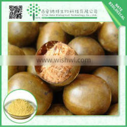 Free Sample Wholesale Products Natural Luo Han Guo Extract 10% by HPLC