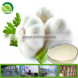 top quality natural plant extract garlic extract allicin free sample