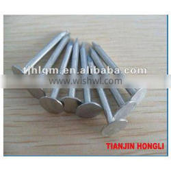 Clout Nail Large head nail used for fixing of ceiling boards & slate tiles | sizes 13mm to 150mm