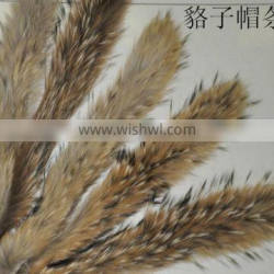 BBG-H-14 Factory direct wholesale price raccoon fur trimming for hood