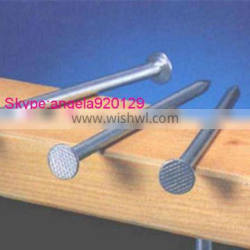 common nail iron nail factory common wire nail
