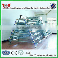 High Quality Layer Cages/Design Layer Chicken Cages/layer chicken battery cage