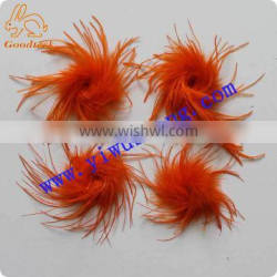 Wholesale decotation orange straight ostrich feather for decoration or accessories import from China