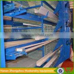 Zhongzhou automatic poultry battery chicken cage for Africa