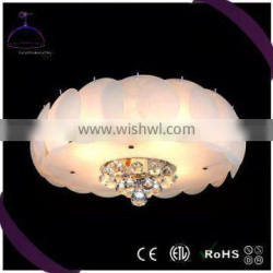 cheap and good quality Top Quality ball ceiling light from China workshop