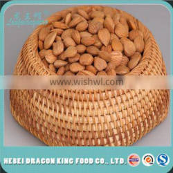 Raw Processing Type and Organic Cultivation Type bitter apricot kernels