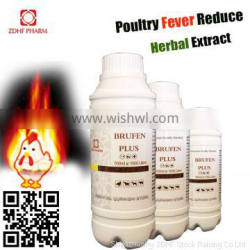 Natural Remedies Anti Viral Fever For Layer Broiler Chicken Chick Hen