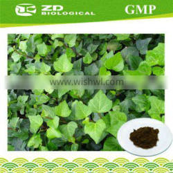 Medical grade Dry extract of Hedera helix CAS 14216-03-6