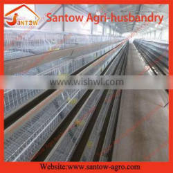 Bottom price hot-sale layer quail cage with auto water system