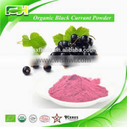 Food Grade Freeze Dried Organic Black Currant Powder,Black Currant Powder
