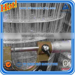Perimeter Fencing Roll / Galvanized welded wire mesh roll