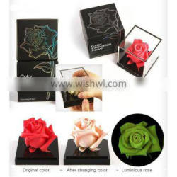 Magic Rose with Color Change & Luminous Function