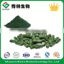 Bolin Brand Bulk Organic Spirulina Powder Capsules for Weight Loss Product