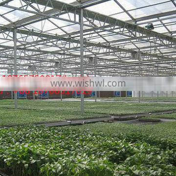 Versatile PE Vegetable Greenhouse/Sun board greenhouses