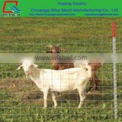 Non Climb Horse Fence/Sheep And Goat Metal Fence
