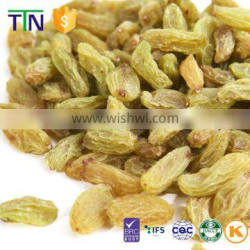 TTN wholesale dried seeded green raisin from Xingjiang