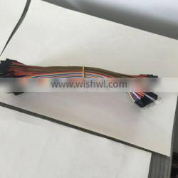 HIKINGBOX 40-Pin Male to Female Rainbow Color Dupont Cable Flat Jumper Wire
