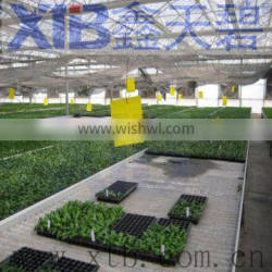 Greenhouse hydroponic growing systems