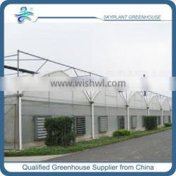 Large Gothic Agricutural Greenhouse