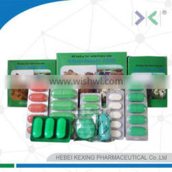 pharmaceutical medicine of albendazole tablet