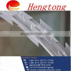 Chinese Supplier Razor wire/safety razor/Barbed wire
