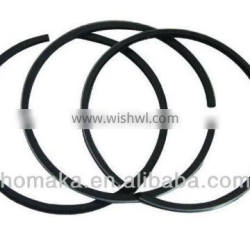 EY20 Piston Rings