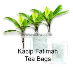 Natural Hormone Balancer for Female Kacip Fatimah Tea