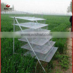 BAIYI Pyramid Type Layer Wire Mesh Quail Cage For Sale