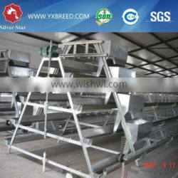 20000 Layer Farm Equipment large scale automatic project