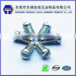 Slotted cup head environmental mchine screws with blue color