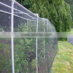 agricultural trap netting to catch birds