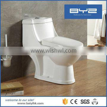 Natural white color handicapped toilet