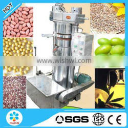 Cheap olive oil press for sale
